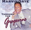 Marvin Gaye Through The Grapevine